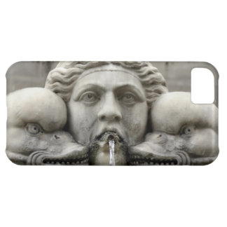 Historic Foutain iPhone 5C Cases