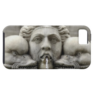 Historic Foutain Tough iPhone 5 Case