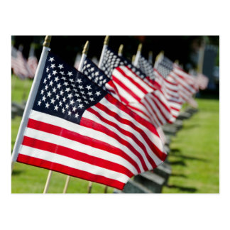 Historic military cemetery with US flags Postcard