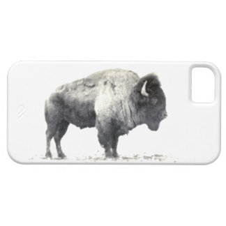 Historical Photograph of American Bison iPhone 5 Cover