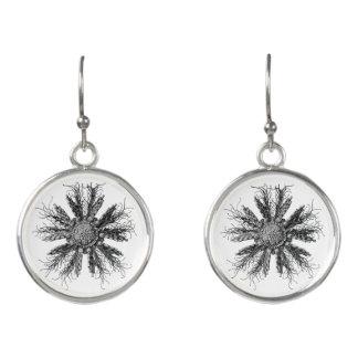 Historical scientific illustration earrings