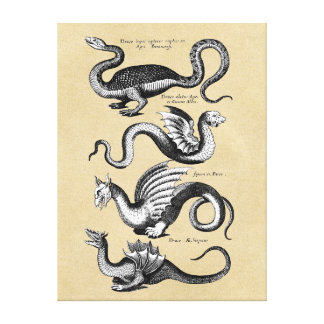 History of Dragons Wall Chart Stretched Canvas Print