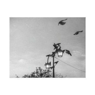 """Hitchcock"" - Black and white Birds Canvas Print"