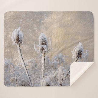 Hoarfrost on Teasels Winter Photo Scenic Nature .. Sherpa Blanket