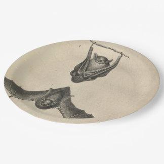 Hoary Bat 9 Inch Paper Plate