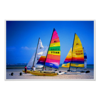 HOBIE CATS IN JERSEY POSTER