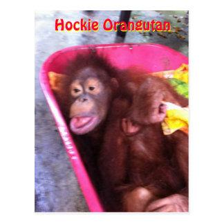 Hockie Orangutan- a special needs girl Postcard