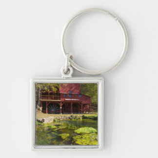 Hodgson Mill Key Ring
