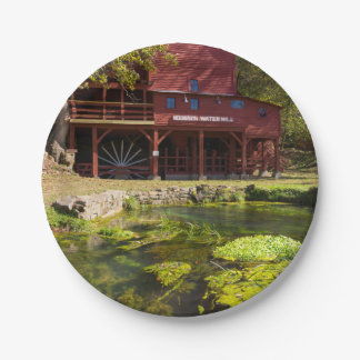 Hodgson Mill Paper Plate
