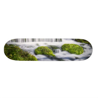 Hodgson Spring Falls 20.6 Cm Skateboard Deck