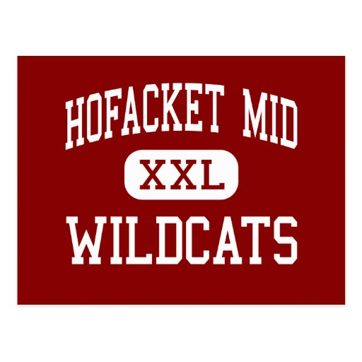 Hofacket Mid - Wildcats - High - Deming New Mexico Postcard