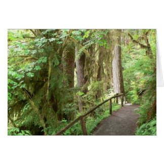 Hoh Valley Rainforest Card