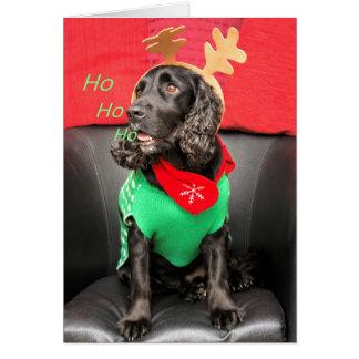 HoHoHo Cute Dog Card