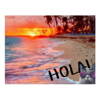 hola kitty postcard