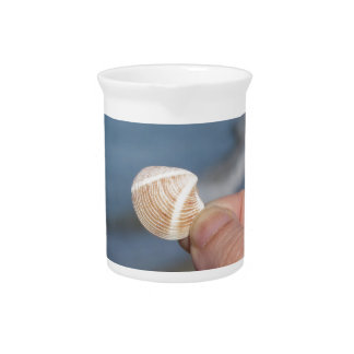 Holding a seashell in the hand pitcher