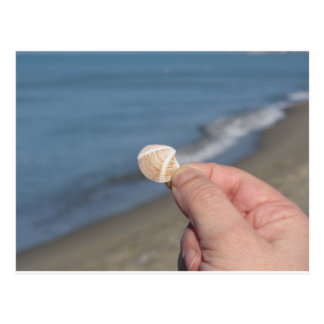 Holding a seashell in the hand postcard