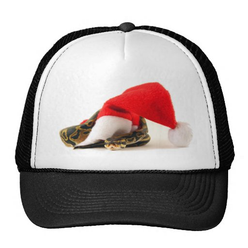 Holiday Ball Phyton Snake Hat