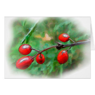 Holiday Berries 3 Greeting Cards