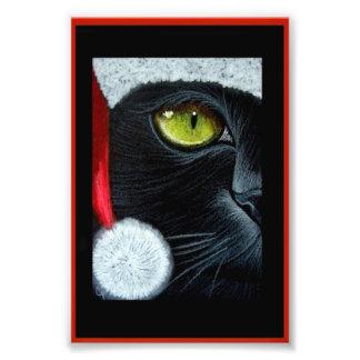 "HOLIDAY BLACK CAT with SANTA HAT PRINT 4"" X 6"" Photo"