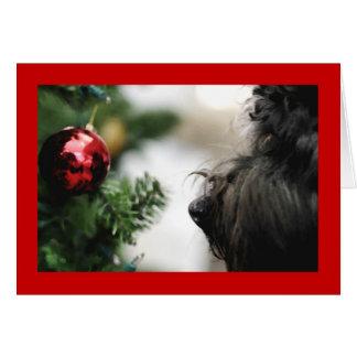 holiday card-loofah card