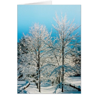 ***Holiday Card: Nature full of divinity. Card