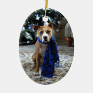 Holiday Cheer from Pit Bull Rescue Dog Ceramic Oval Decoration