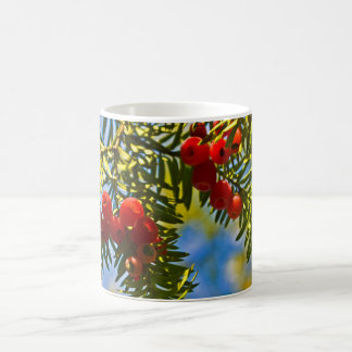 Holiday Conifers Coffee Mugs