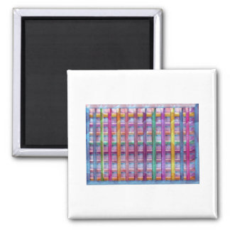 Holiday Fever : Illuminated Colorful Flourscent Ro Square Magnet