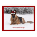 Holiday German Shepherd Post Cards