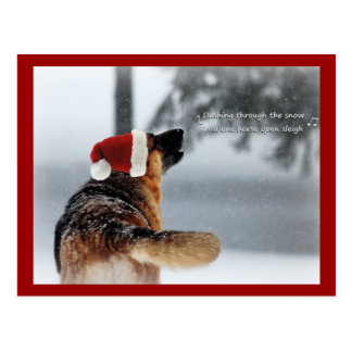 Holiday German Shepherd Postcard
