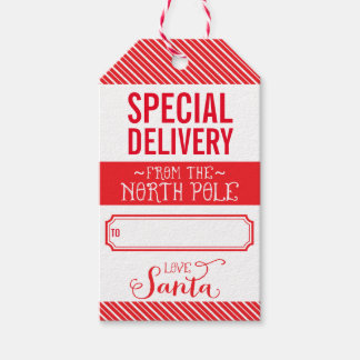 HOLIDAY GIFT TAG special delivery from santa red