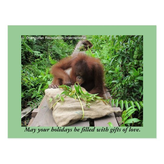 Holiday Gifts Jungle Style for Orangutans Postcard