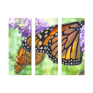 Holiday gifts Monarch Butterfly Canvas Panels Gallery Wrapped Canvas
