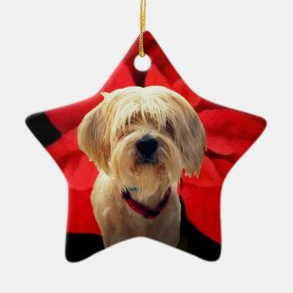 Holiday Pet Ornament