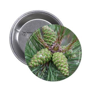 Holiday Pine Cones 6 Cm Round Badge