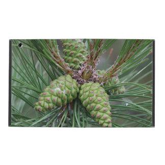 Holiday Pine Cones iPad Folio Cases