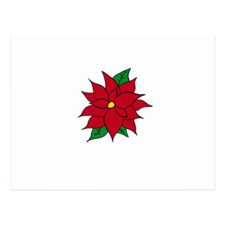 HOLIDAY POINSETTIA / FLOWER, CHRISTMAS POSTCARD