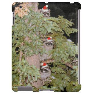 Holiday Raccoons
