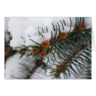 Holiday Snowy Pine Greeting Card