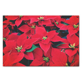 Holiday Tissue Paper-Red Poinsettias Tissue Paper