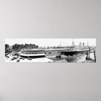 Holland America Line Docks Poster