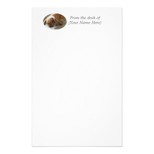 Holland Lop Eared Rabbit Stationary Stationery