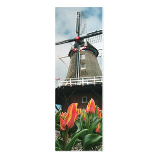 Holland Tulip Time Windmill Pack Of Skinny Business Cards
