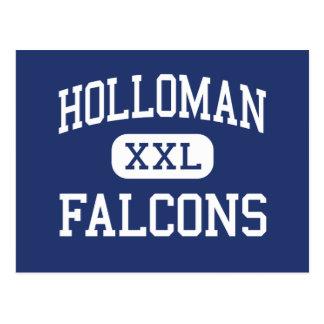 Holloman Falcons Holloman Air Force Base Postcard