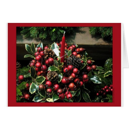 Holly Berries Card
