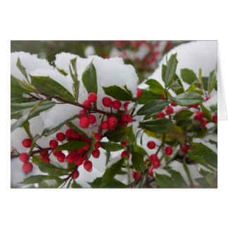 Holly Berries Stationery Note Card