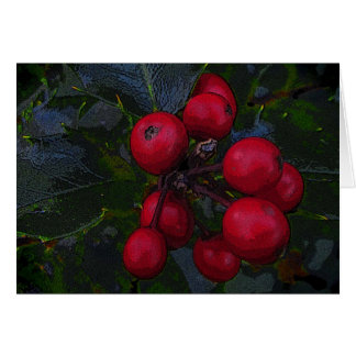 Holly Berries Christmas Cards