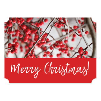 Holly Berries Christmas Holiday Card