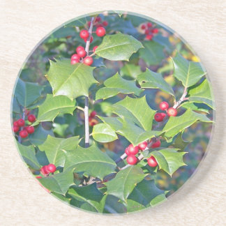 Holly Berries nature Beverage Coaster