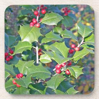 Holly Berries nature Beverage Coasters